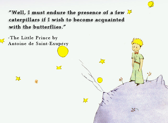 The Little Prince / Quotes
